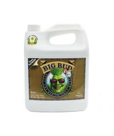 Big Bud Coco 10l Akcelerator kwitnienia