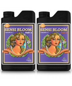 Sensi BLOOM A i B 2 x 10l Advanced Nutrients