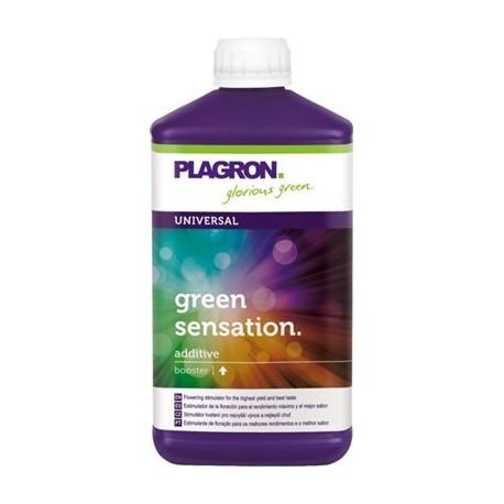 PLAGRON GREEN SENSATION 1L