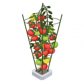 PLANT SUPPORT 45CM