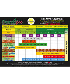 DUTCHPRO AUTO FLOWERING SOIL BLOOM A/B 2*1L