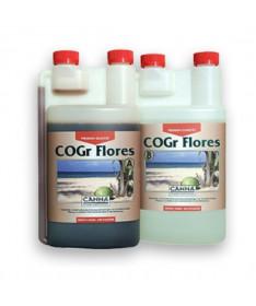 CANNA COCO COGR FLORES A/B 2*1L
