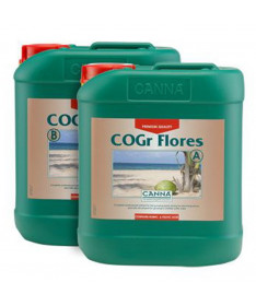 CANNA COCO COGR FLORES A/B 2*5L