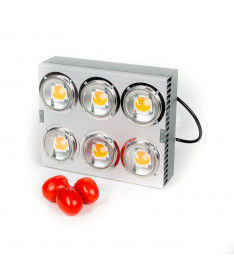 Spectrolight Lampa LED Maximus 1000W soczewka kąt 120°
