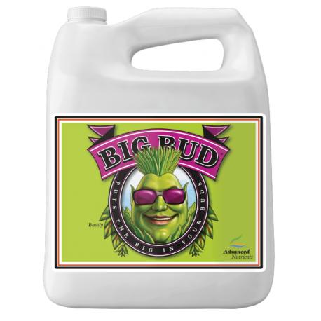 Big Bud 5l Akcelerator kwitnienia