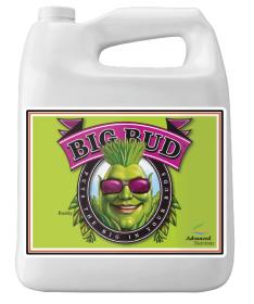 Big Bud 250ml Akcelerator kwitnienia