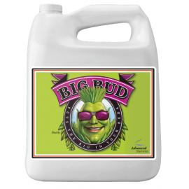 Big Bud 10l Akcelerator kwitnienia