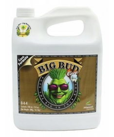 Big Bud Coco 250ml Akcelerator kwitnienia Advanced Nutrients