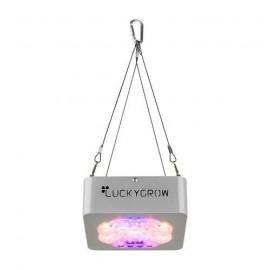 Luckygrow modular110 + źródło światła na WZROST 120°